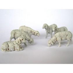 Pecore assortite