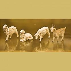Capra con pecore