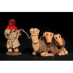 Cammelliere con cammello