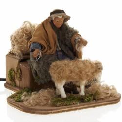 mesiere tosatore pecore cm12