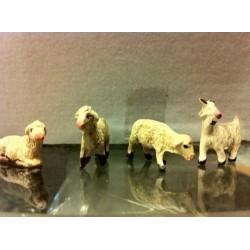 Pecore e capre KIT 4PZ.