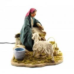 donna che nutre pecora in movimento
