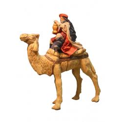 Magio barba bianca su cammello