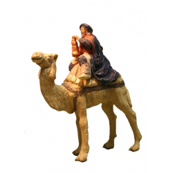Magio barba marrone su cammello