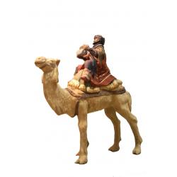 Magio moro su cammello