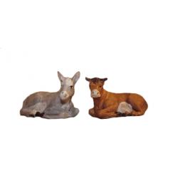 coppia asino e bue