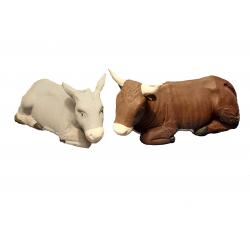 coppia bue e asino